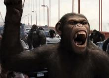 rise of the planet of the apes_3